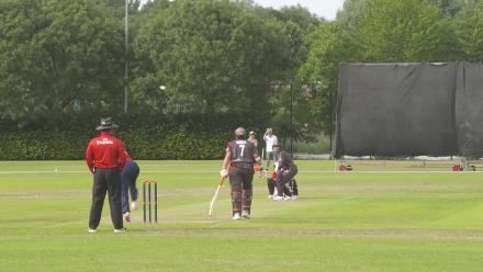 WT20Q - Netherlands v United Arab Emirates match highlights