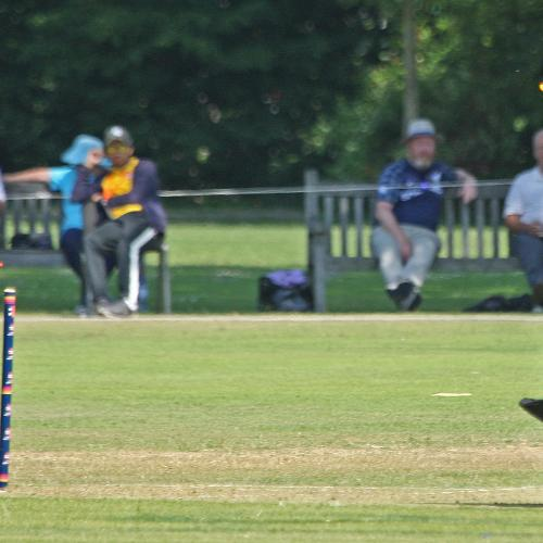 Tau is stumped by Mary Waldron off Metcalfe, 1st Semi Final Ireland v PNG, VRA, 12th July 2018