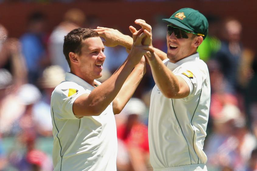 Marsh and Hazlewood will 'support and help drive the teamâ????s goals and objectives', said Trevor Hohns